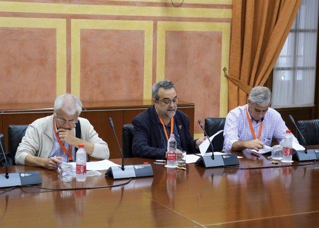 Representantes de la Coordinadora Andaluza de Memoria Democrática, en su comparecencia de este martes en el Parlamento de Andalucía sobre el Presupuesto de 2020.