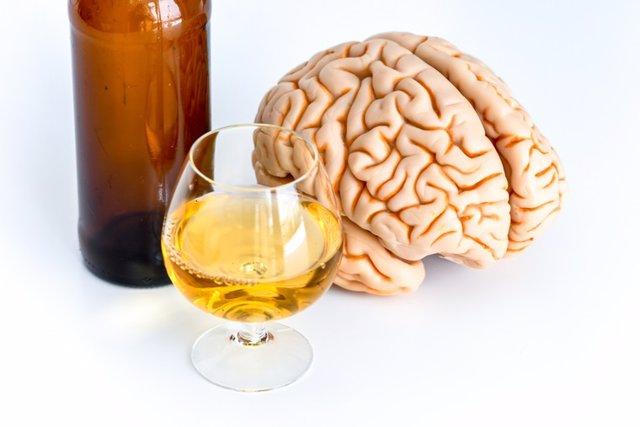 Beber, alcohol, cerebro
