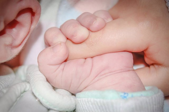 Un bebè agafa un dit d'una mà. Bebè, nounat, gestació, infància, nen, fills