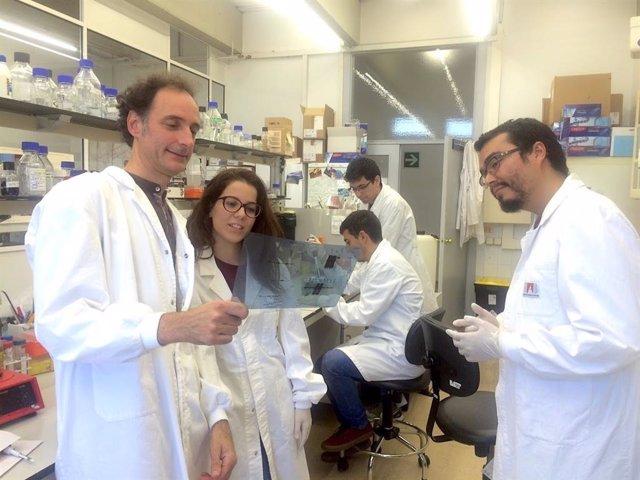 Grupo de Carles Saura en el Institut de Neurociències de la UAB