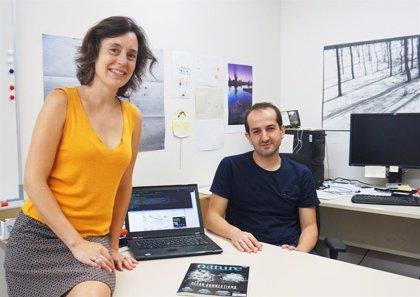 Crean un algoritmo que predice la interacción de fármacos en 85 tipos de cáncer