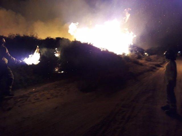 Incendio forestal en el paraje Pinar del Tábano en Manilva.