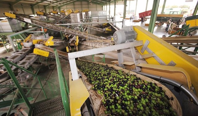Almazara de aceite de oliva