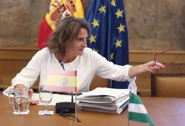 La ministra para la Transición Ecológica en funciones, Teresa Ribera preside la Conferencia Sectorial de Medio Ambiente en la sede del Ministerio, en Madrid, a 30 de septiembre de 2019.