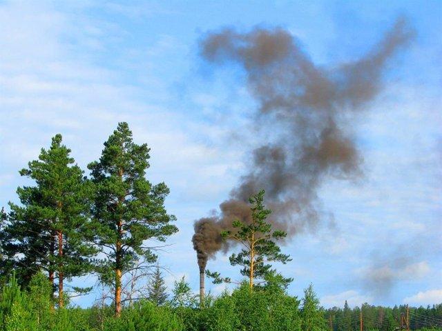 La naturaleza supera a la tecnología contra la contaminación del aire
