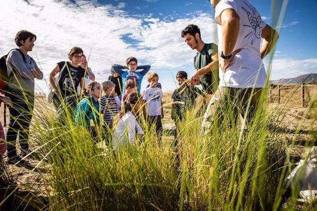 L'AMB celebra aquest diumenge la segona edició de la 'Acció Platges Met' a vuit municipis