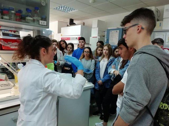 La Semana de la Ciencia 2018 en el Ifapa