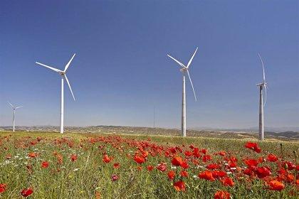 Acciona regresa a España con su inversión en renovables