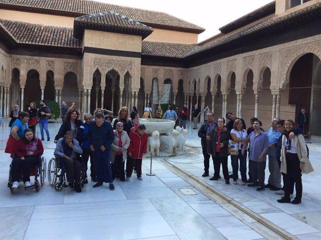 Visita de los residentes de la López Barneo a La Allhambra