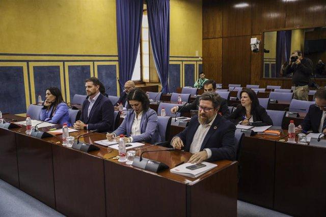 Los representantes de los distintos grupos politicos parlamentarios en  la comisión de investigación parlamentaria sobre la Faffe. Foto de archivo