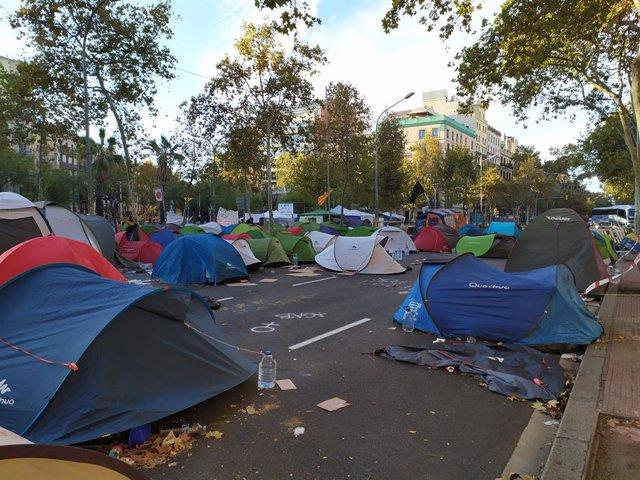 Un centenar de tendes de campanya segueixen en l'acampada de plaça Universitat el dissabte 9 de novembre, coincidint amb la jornada de reflexió.