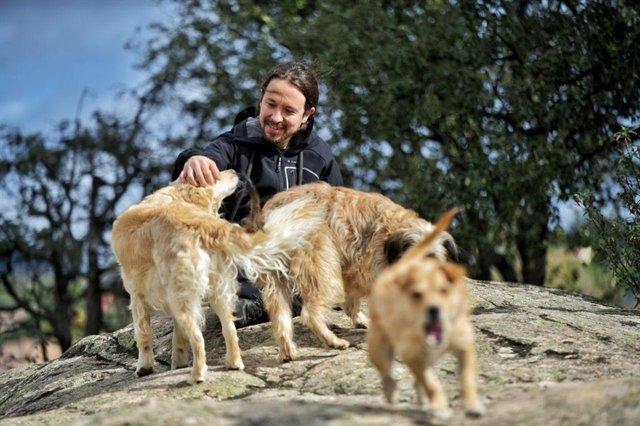 Pablo Iglesias al costat dels seus gossos durant la jornada de reflexió del 10