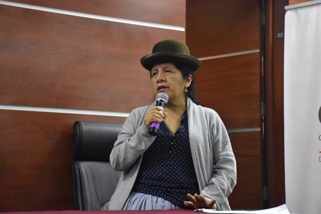 La presidenta del Tribunal Supremo Electoral (TSE) de Bolivia, María Eugenia Choque