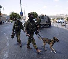 Mor un palestí per trets de les forces d'Israel durant una protesta a Hebron (RONEN ZVULUN / REUTERS)