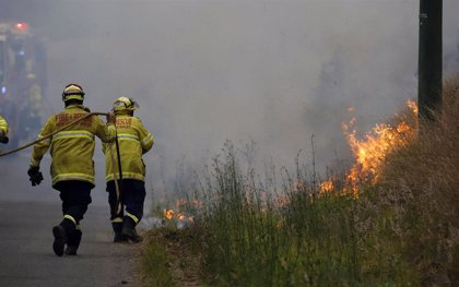 Cierran más de 600 escuelas en Australia ante el avance de los incendios forestales