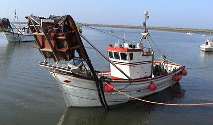 """La Junta plantea medidas para una pesca de dragas mecanizadas """"rentable y sostenible"""" en el Mediterráneo"""