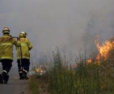 Tanquen més de 600 escoles a Austràlia davant l'avanç dels incendis forestals (Darren Pateman/AAP/dpa)