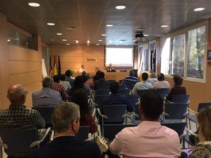 Endesa asesora a los Ayuntamientos de la Felib sobre la nueva contratación de suministro eléctrico