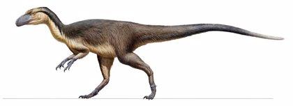 Primeros restos de dinosaurios con plumas de hábitats polares extremos