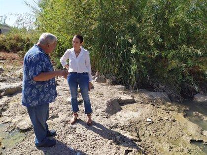 Vox pide incluir en el presupuesto municipal de 2020 el adecentamiento del río en Córdoba