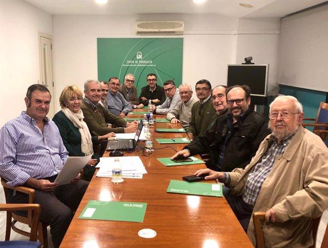 Huelva.- Pablo Aguado, la ganadería Hijos de Celestino Cuadri y José Sánchez Bor