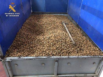 Detenido por robar más de 12 toneladas de almendras para su venta en Cantabria y otras provincias