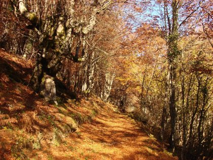 El Monte Hijedo será el protagonista de las Jornadas Europeas de Patrimonio