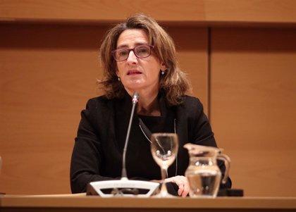 """Teresa Ribera ve """"una buena noticia"""" el preacuerdo con Podemos y dice que los ministros los elige quien sea presidente"""