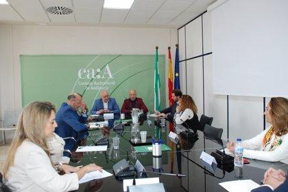 """Junta y Consejo Audiovisual andaluz plantean líneas de colaboración para la """"alfabetización mediática"""" de jóvenes"""