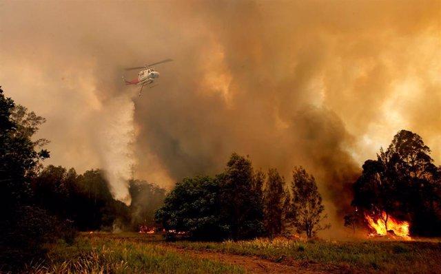 Incendios en Nueva Gales del Sur, Australia.
