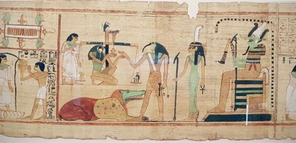 Los antiguos egipcios capturaban masivamente ibis para uso ritual