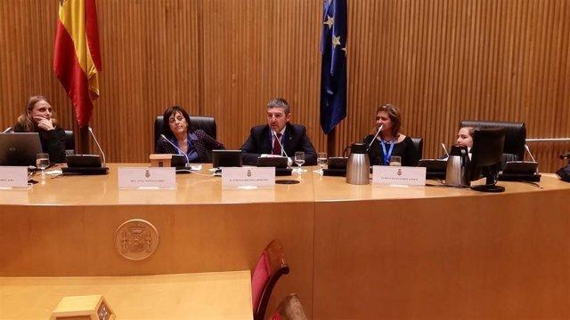 Acto de sociedades científicas y pacientes con diabetes en el Congreso de los Diputados para reivindicar la importancia de su enfermedad