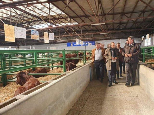 El consejero Rafael España recorre la Feria de Agroganadera de Trujillo