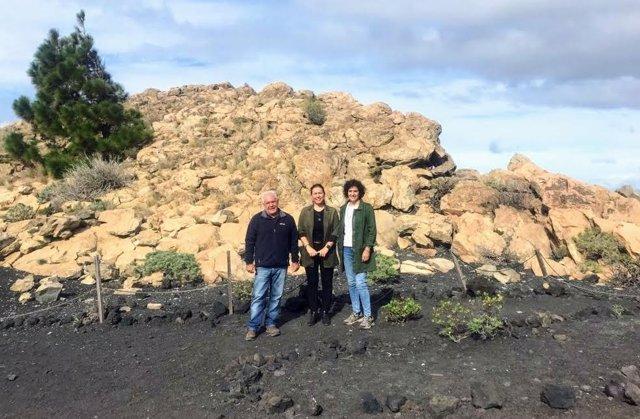 El Cabildo protegerá el Roque Teneguía con un vallado