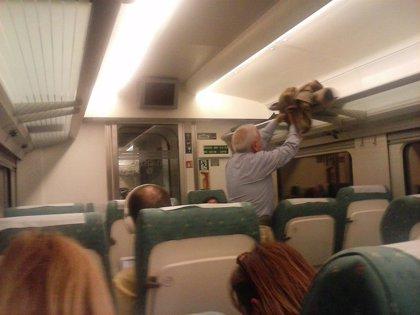 Transbordados los viajeros del tren Gijón-Madrid por condiciones atmosféricas adversas