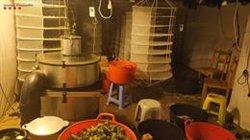 Desmantellada una plantació de marihuana a Sant Pere de Ribes valorada en 200.000  euros (ACN)