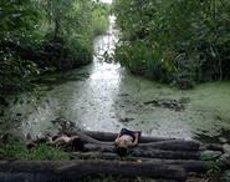 La Fundació Miró projecta 'Becoming Alluvium', sobre les llums i ombres del riu Mekong (BECOMING ALLUVIUM)
