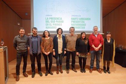 Ganadería.- El Gobierno de Navarra aborda con expertos y agentes del sector la presencia del oso pardo en el Pirineo