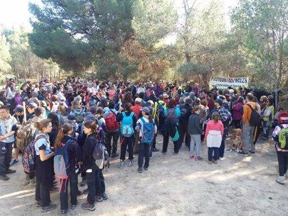 Plantan más de 14.000 bellotas en Les Moles para rechazar la construcción de Intu Mediterrani