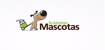 Siete espacios museísticos y naturales de Palencia 'dogfriendly' para visitar con mascotas