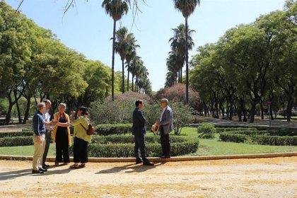 Encargan la colocación de vallas en parterres del centro de Sevilla y la sustitución de papeleras en parques