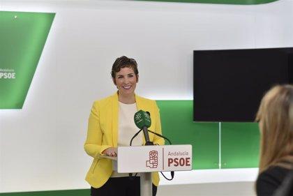 """PSOE-A: """"El que quiera tener una educación segregada que se la pague"""""""