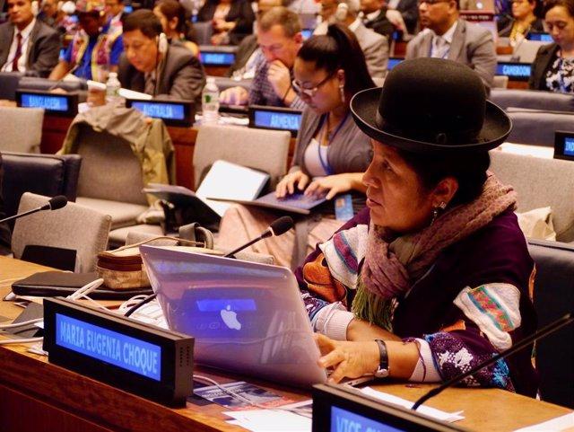 María Eugenia Choque Quispe, Ex Presidenta Del Tribunal Supremo Electoral De Bolivia
