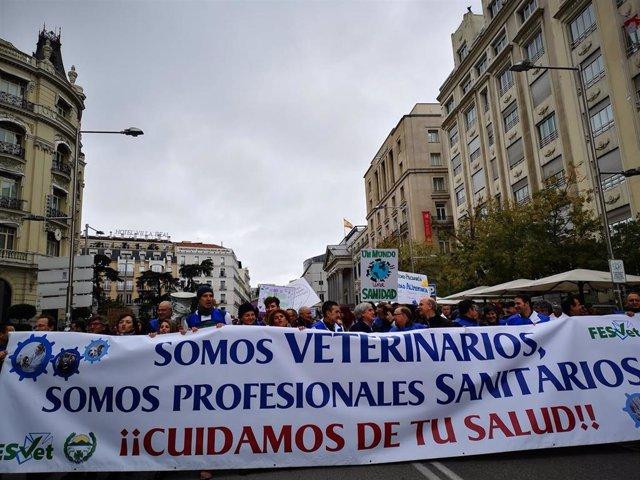 Manifestación de veterinarios en Madrid este domingo 17 de noviembre de 2019