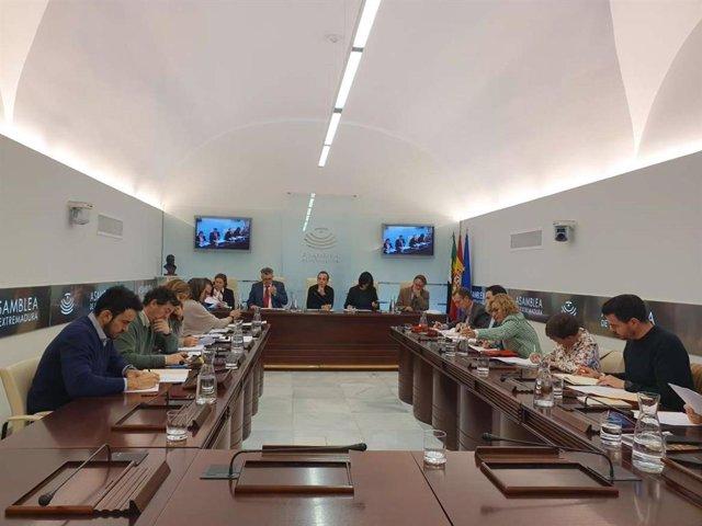 """La Junta propondrá la construcción y funcionamiento de """"al menos"""" cinco nuevas i"""