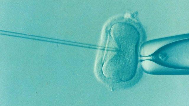 Fecundación in vitro.