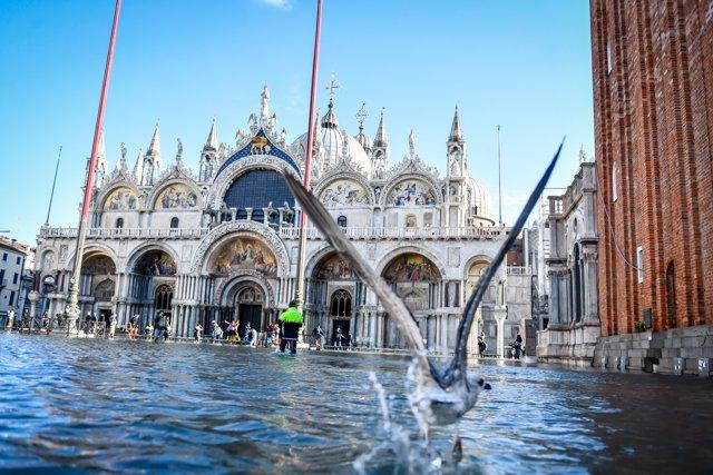 La Plaza de la Basílica de San Marcos en Venecia, inundada por la marea alta