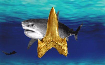 Un tiburón se une a los grandes seres que vivieron con los dinosaurios