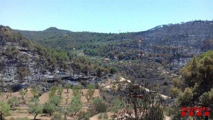 UP reitera la necesidad de mejorar los seguros de afectados por el incendio de La Ribera