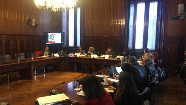 La responsable de Polítiques d'Infància Save The Children, Emilie Rivas, ha comparegut en la Comissió d'Infància del Parlament.